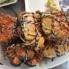 【上海蟹】阳澄湖で食べようぜ! フラワージャージと共に・・・