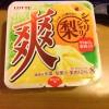 【アイス】爽の梨味が出たぞ!早速食べてみた!