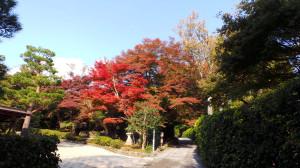 kyoto_024