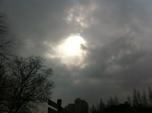 一週間前からの雨の予報は覆り、太陽が顔を覗かせました。