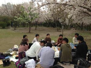 桜の下、いつもの三国殺等をして、無事お花見を終えることが出来ました。