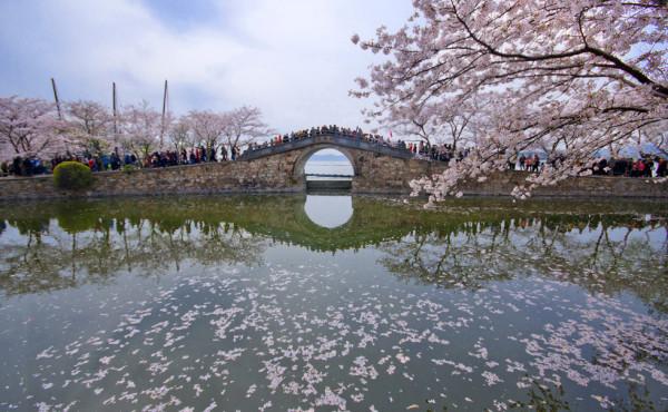 Wuxi_Taihu_lake_Changchun_bridge